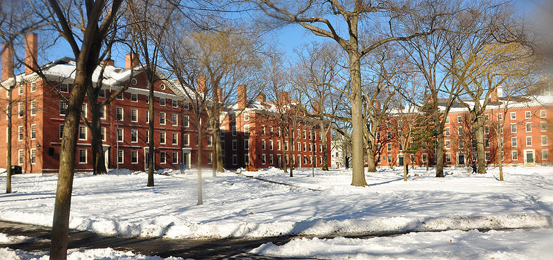 The Road to Harvard: Finally the Essay Writing | Indonesia