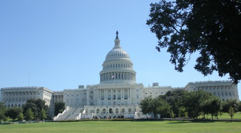 Washington, D.C.: IR Students' Ultimate Destination?