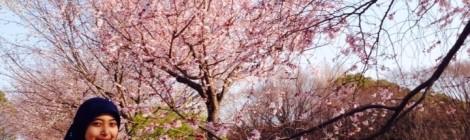 Terdampar di Negeri Sakura: Sebuah Kilas Balik