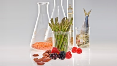 Food Science what is major