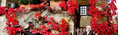 Musim semi di kota Bourgogne