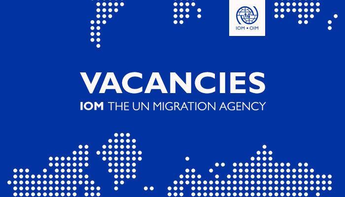 Poster untuk rekrutmen peserta magang di IOM yang disebarkan melalui linked in