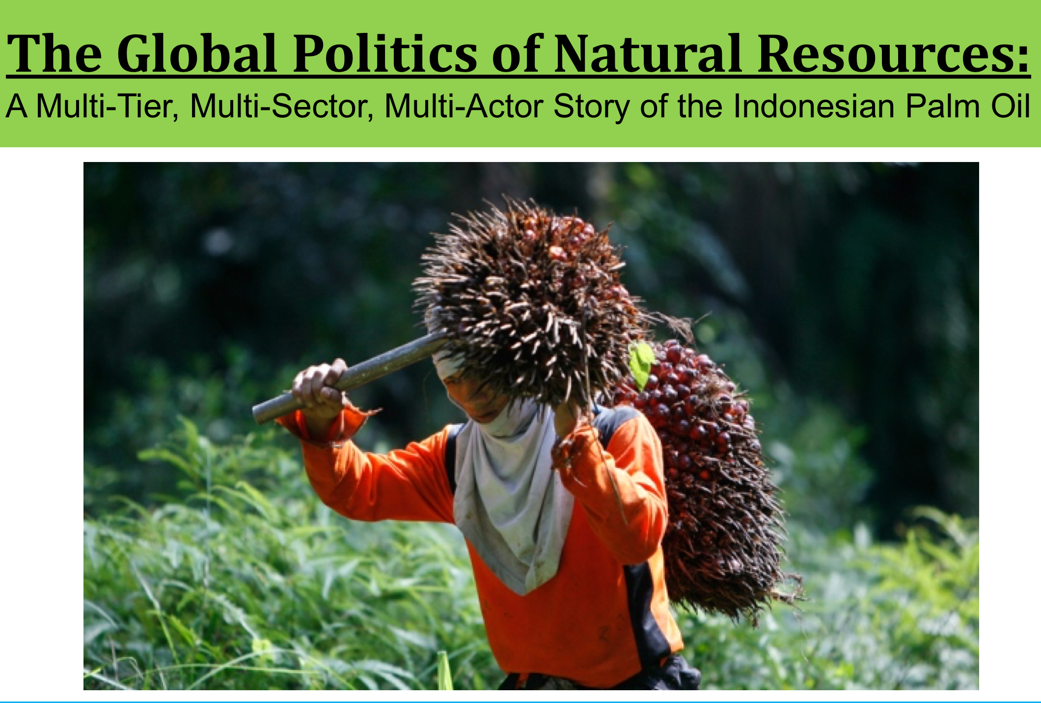 Presentation on Indonesian Palm Oil Politics