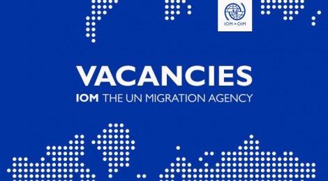 Vacancies at The UN Immigration Agency