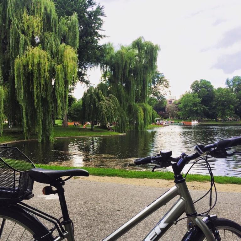 Enjoying a bike trip to Boston Public Garden