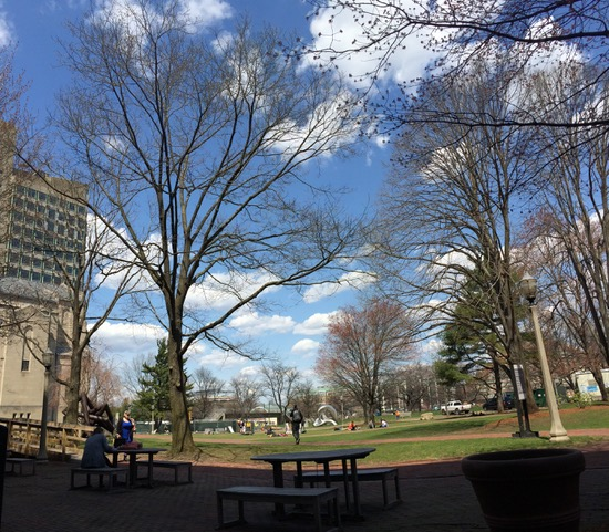 At Boston University where I usually reread and rewrite my notes (when the weather is nice). Photo by author.