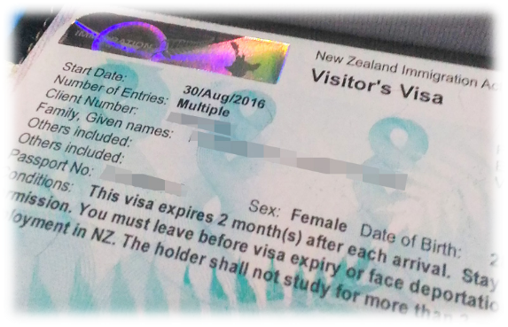 Sample of NZ Visitor's Visa