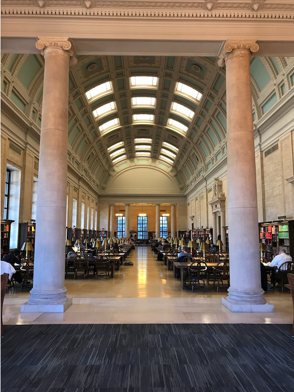 Loker reading room in Widener Library. One of the main reading room in the biggest library in campus. Photo by author.