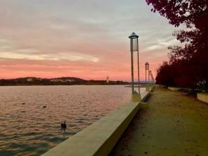 Canberra Peace Park - @stephanideby