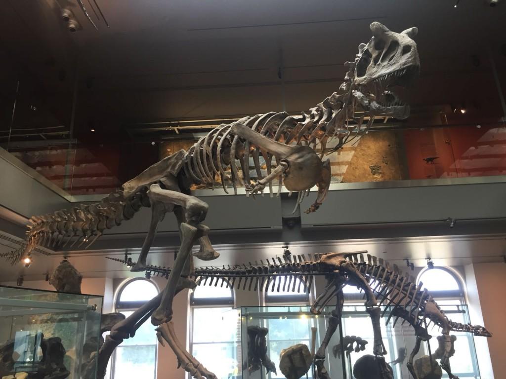 Exploring Ancient Dinosaur Depictions at Natural History Museum of Los Angeles.