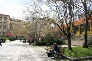 Suasana kampus