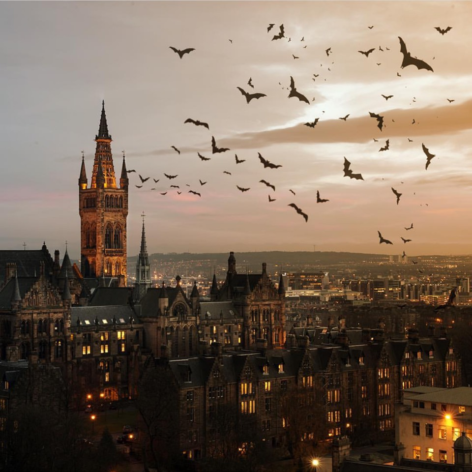 Another breathtaking view of the University of Glasgow. Photo by author.