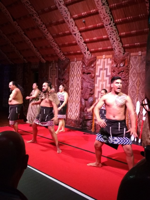 Cultural Performance at Waitangi Treaty Ground