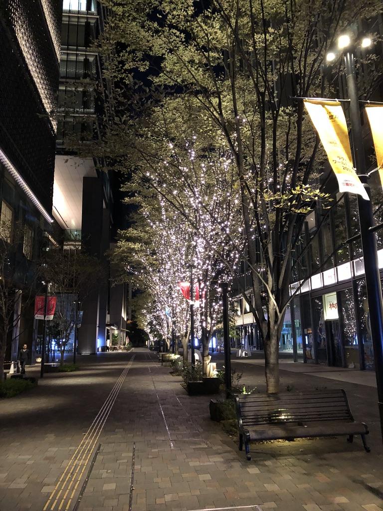 Tokyo Winter