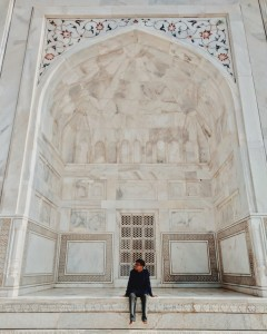 The closer look of the Taj.