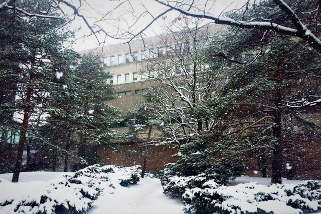 University of Waterloo in Winter